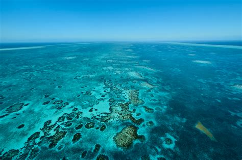 Belize Barrier Reef - Caribbean Culture and Lifestyle