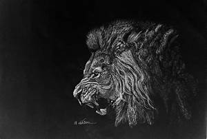 Lion Roar- Pencil Drawing by Avishjoseph on DeviantArt