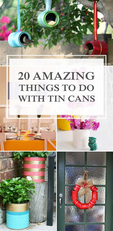 amazing     tin cans