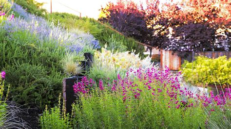how to land scape a hillside garden s ingenious design sunset