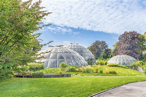 Botanischer Garten Zürich  Botanischer Garten