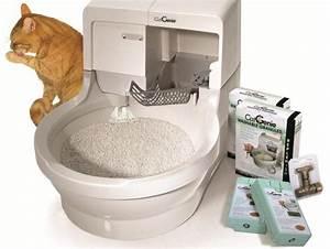 Litiere Chat Sans Odeur : astuces contre l 39 odeur de la liti re pour chat ~ Premium-room.com Idées de Décoration