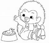 Hedgehog Coloring Pages Coloringpages1001 Animals sketch template
