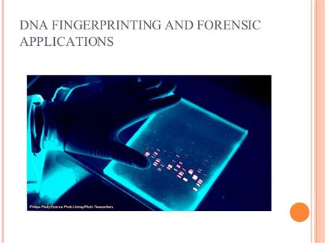 Dna Fingerprinting And Forensic Applications