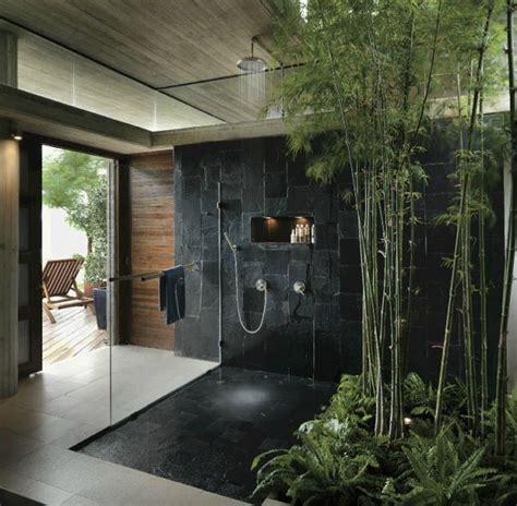 les 25 meilleures id 233 es concernant plantes de salle de bains sur plantes dans une