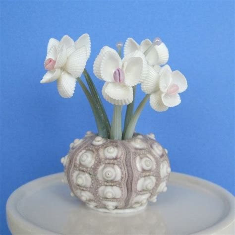 how to make seashell flowers 109 best images about shells on pinterest conch shells painted sea shells and sea shells