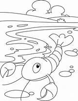 Raki Kraby Kolorowanki Bestcoloringpages sketch template