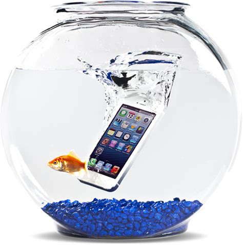 what to do when phone falls in water what what not to do when your smartphone falls into water
