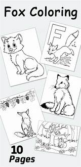 Fox Coloring Printable Foxes Momjunction sketch template