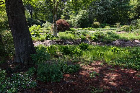 Botanischer Garten Grüningen öffnungszeiten by Schattenpflanzen Stiftung Bremer Rhododendronpark