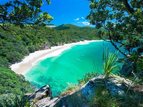 The Best Beaches In New Zealand  Photos  Condé Nast Traveler