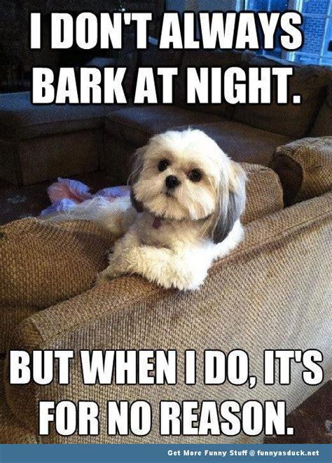 Barking Dog Meme - image