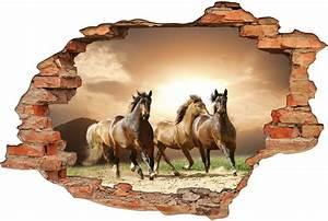 Image Trompe L Oeil : stickers trompe l 39 oeil 3d chevaux pas cher ~ Melissatoandfro.com Idées de Décoration