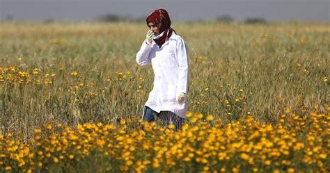 israel selidiki penembakan paramedis palestina razan najjar  gaza berita viral hari