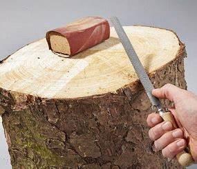 Was Kann Man Mit Einem Abgesägten Baumstamm Machen Kahler Baumstamm