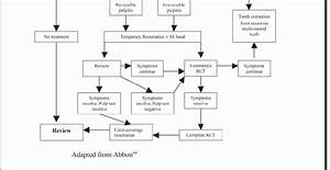 Treatment Flow Chart For Aae Classification Of Cracked