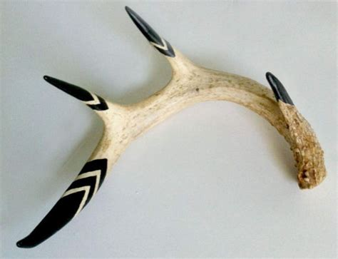 Hand Painted Naturally Shed Deer Antler Home Decor