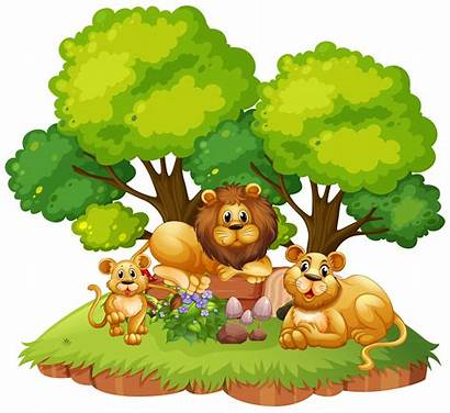 Lion Isolated Nature Vector Clipart Graphics