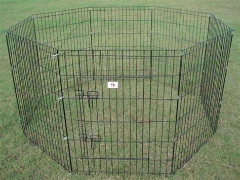 portable dog fence    dog