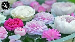 Servietten Falten Rose Anleitung : rose servietten falten rose bl te blume anleitung diy deko one stroke painting ~ Frokenaadalensverden.com Haus und Dekorationen
