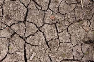 Dry Cracked Ground - Free Texture