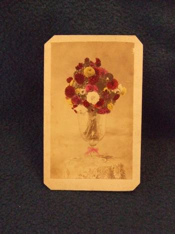 cdv  life  vase  tinted flowers collectors weekly