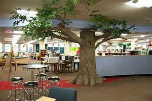 """Information about """"BPL-tree.jpg"""" on bloomington public ..."""