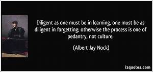 Diligent as one... Albert J Nock Quotes