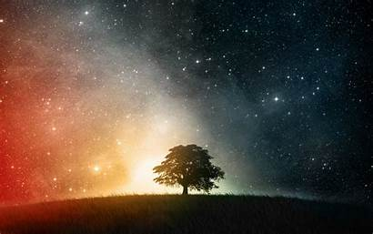 Stars Space Trees Desktop Wallpapers Backgrounds Mobile