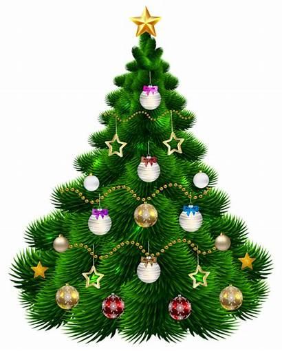 Tree Christmas Clipart Clip Trees Ornaments Transparent