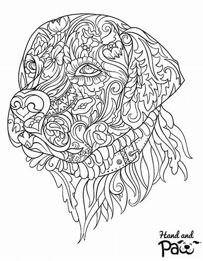 Coloring Pages Labrador Adult Sheets Printable Leave