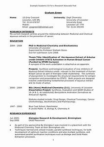Example academic cv for Academic cv sample
