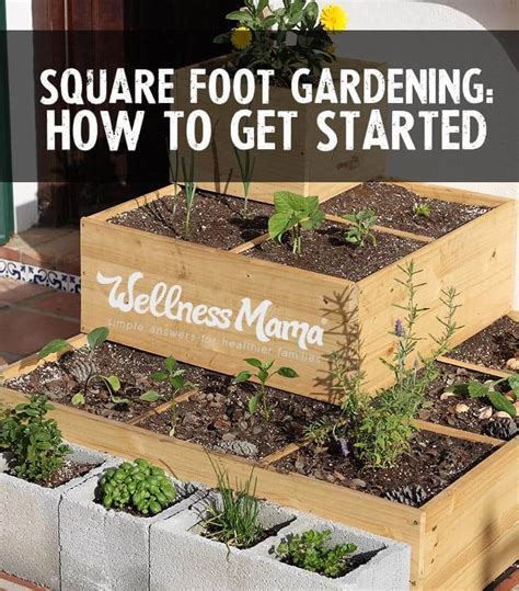 How To Get Started Square Foot Gardening  Wellness Mama