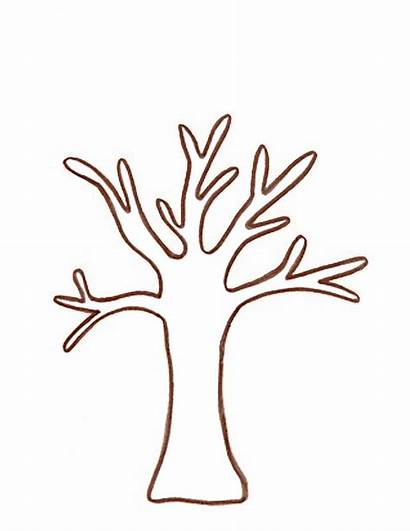 Tree Trunk Branches Template Craft Clipart Crafts