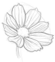 How to Draw Easy Flower Drawings