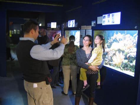 aquarium de bruxelles expo bruxelles quefaire be