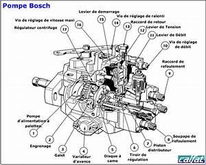 Qashqai Fuse Box Diagram