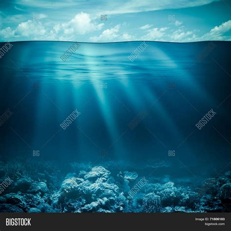 underwater coral reef seabed water image photo bigstock