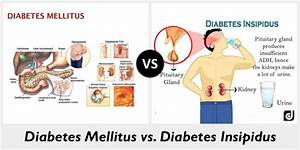 Difference Between Diabetes Mellitus And Diabetes Insipidus