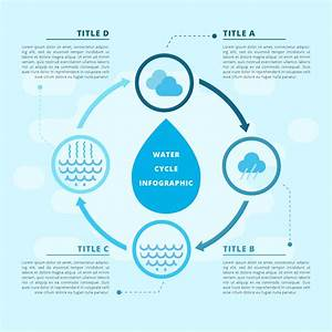 Water Cycle Vector Infographic