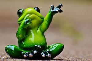 Frosch Bilder Lustig : kostenloses foto frosch winken abschied lustig kostenloses bild auf pixabay 986025 ~ Whattoseeinmadrid.com Haus und Dekorationen
