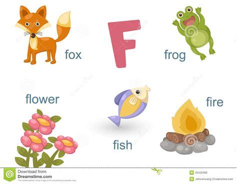 Alphabet F Stock Vector. Illustration Of Letter, Animal