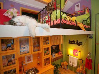 The Cat House by The Slug Inside The Cat House