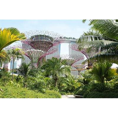 Gardens by the Bay Singapore: The Coolest in