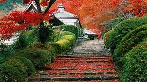 Photo Collection Japanese Garden Wallpapers Widescreen