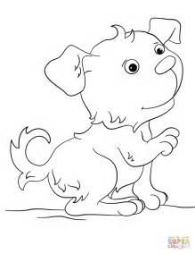 suloinen koiranpentu vaerityskuva