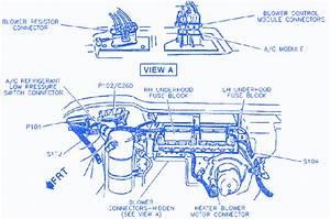 Buick Lesabre 1999 Wiring Electrical Circuit Wiring