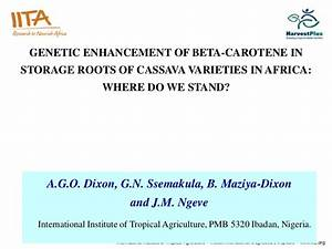 Genetic Enhancement Of Beta
