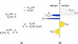 Structure  Electrical Conductivity And Oxygen Transport