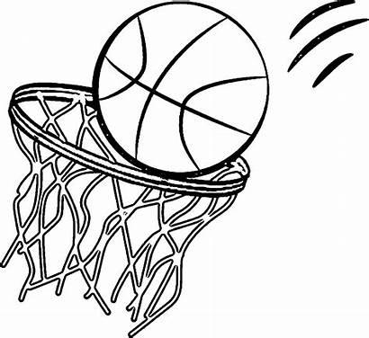 Pelota Canasta Colorear Coloring Dibujos Basketball Printable
